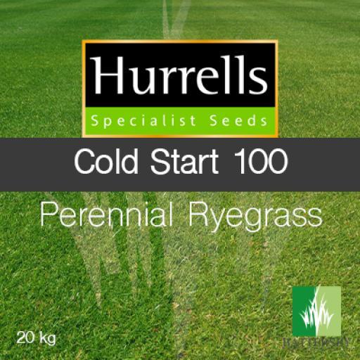 COLD START 100 Turf Perennial Ryegrass - 20KG
