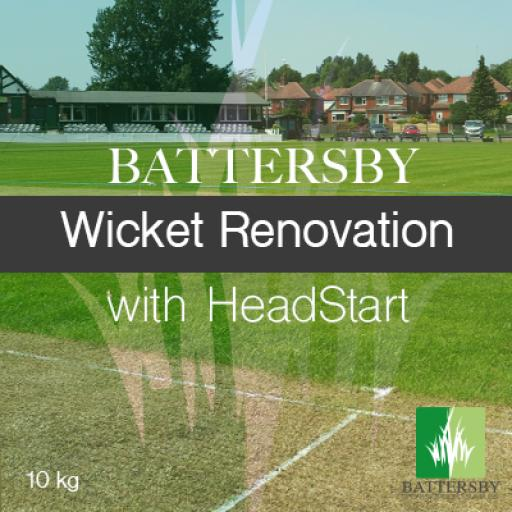 wicket reno with headstart 2.png