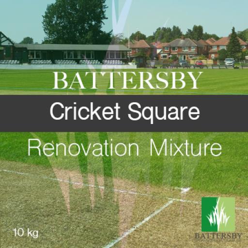 BATTERSBY Cricket Square Renovation - 10KG