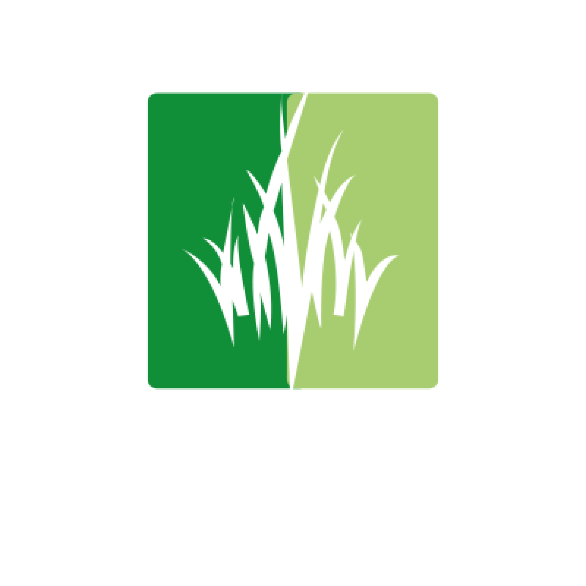 Battersby Social Media (1).png